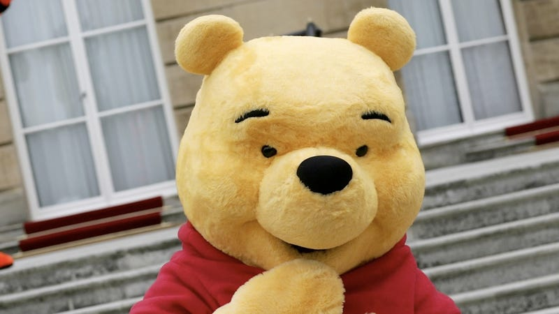 Real-Life Pooh Bear Gets Greedy Face Stuck in Jar, Nearly Dies