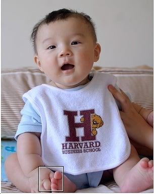 The Ten Types of Harvard Wannabes