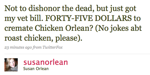 The Tragic Tale of Susan Orlean's Chicken