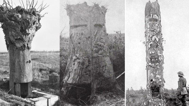 During World War I, fake trees for snipers would pop up overnight