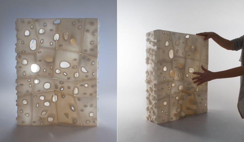Wood, Salt, and Wonder: The Renewable Future of 3D Printing