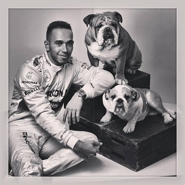 Just saw this on r/formula1, Lewis Hamilton's family portrait.