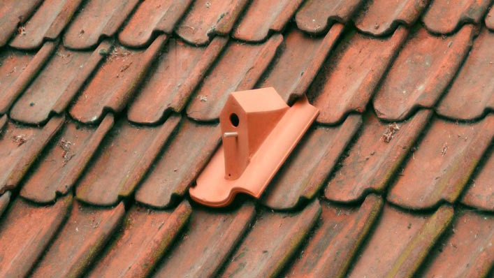 This Birdhouse Tile Makes the Most of Your Roof