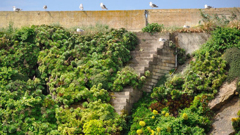 22 Stairways That Lead Nowhere