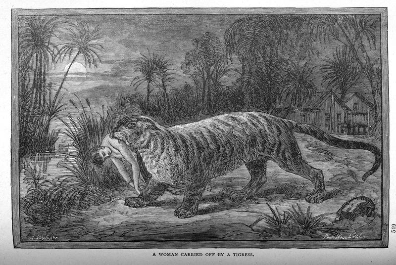 This gruesome 1889 biology book outlined the many ways animals will kill us