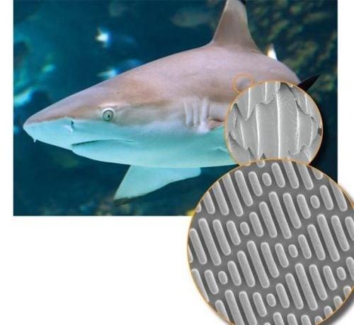 Sharkskin Inspired Material Repels Bacteria