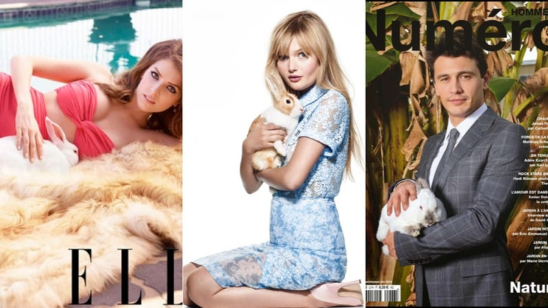 Bunnies Are Having a Major Fashion Moment (Because They Rule)
