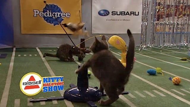 The Bissell Kitty Halftime Show Was an Acid Trip of Kitty