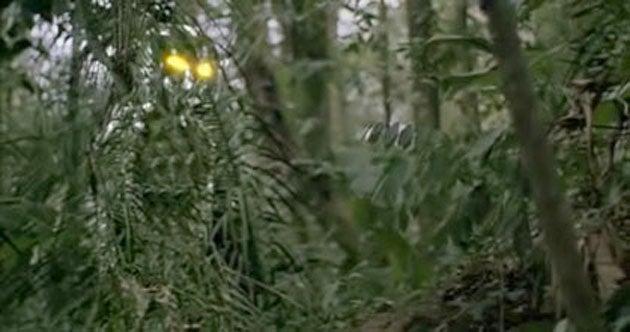 Predator Camo Comes To Kinect
