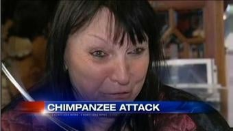 Owner of Face-Mauling Chimp Dies of a Broken Heart