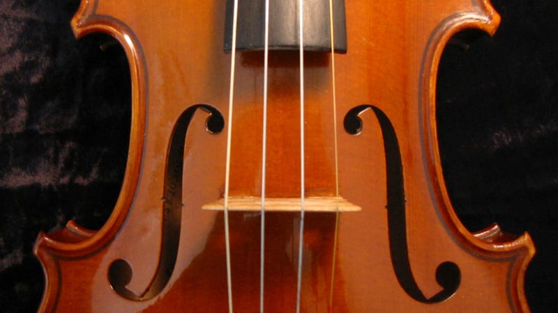 Violins strung with spider silk sound incredible