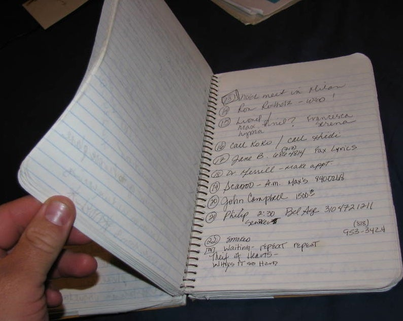 Is This Madonna's Diary?