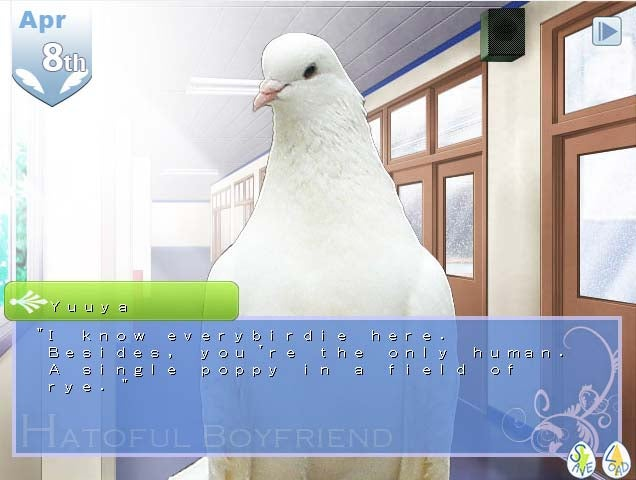 I Want Its Plumage, I Want Its Suspense, My Game of the Year Could Be a Bird Romance