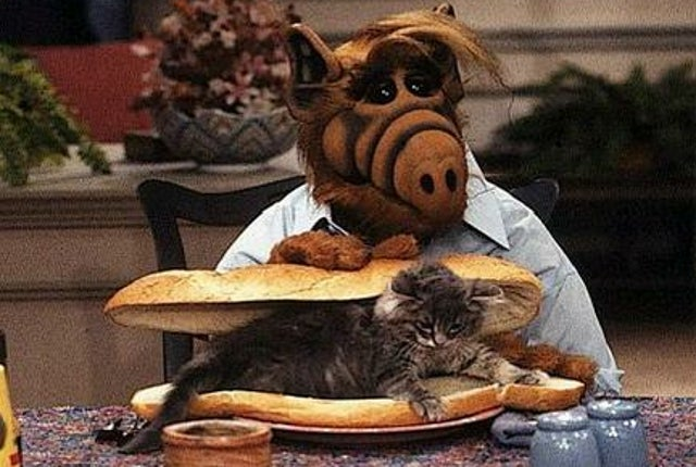 ALF Creator Paul Fusco Thinks 'Timing is Right' for an ALF Movie