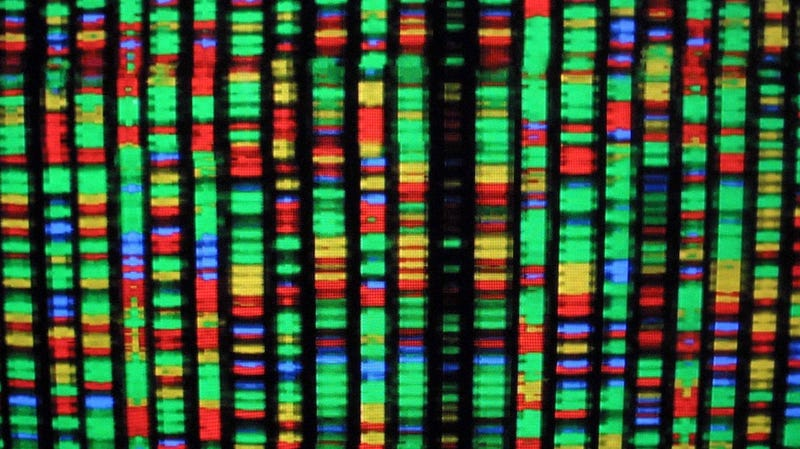 Prenatal Genetic Testing: Another Arena in Which Men are Now Unnecessary