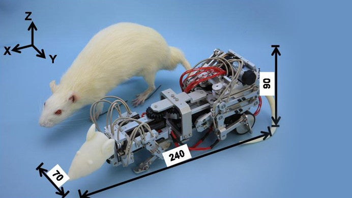 This Robotic Mouse Was Designed to Stress Out Real Mice