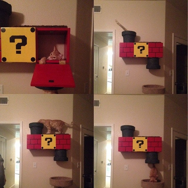 No Cat Should Be Without A Mario Warp Pipe Climbing Box