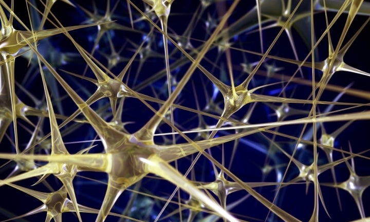 "IBM's ""neurosynaptic"" chips are the closest thing to a synthetic brain yet"