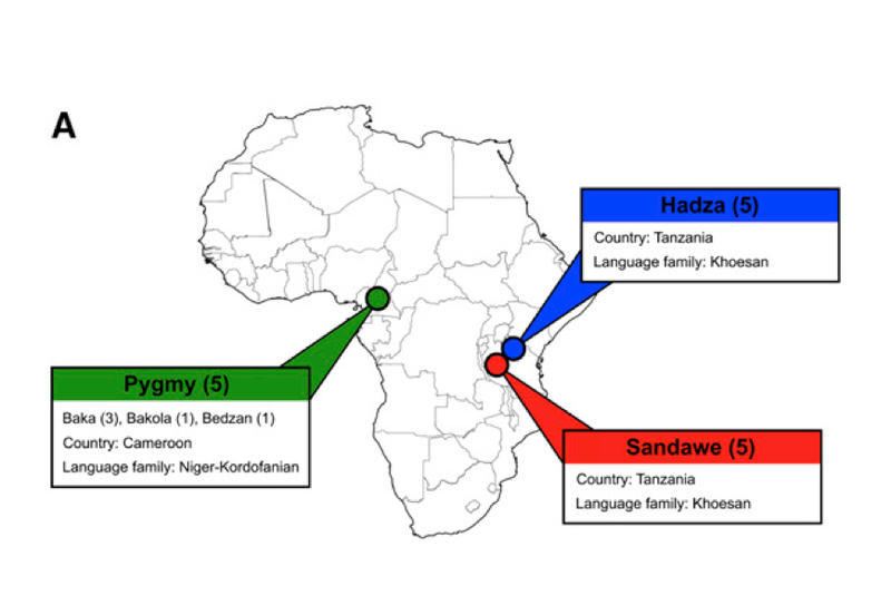 Does the African genome hold the secrets of a previously unknown species of hominid?