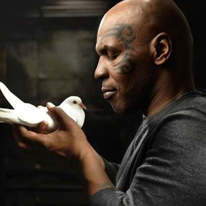 "Mike Tyson's Pigeons ""Have The Bloodlines Of Richard The Lionheart"""