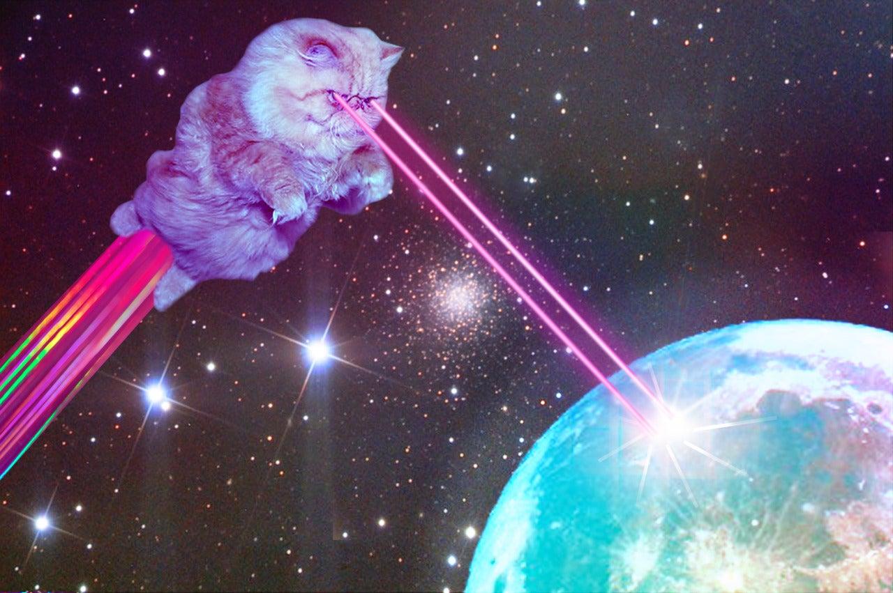 <b>Space Cats</b> HD <b>Wallpaper</b> - WallpaperSafari