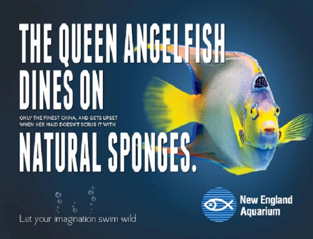 The New England Aquarium Has Some Great Advertising