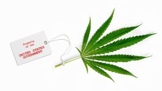 How Research Scientists Get Free Illegal Drugs from the Government