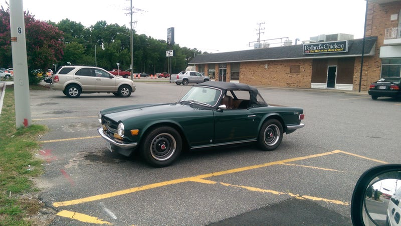 3 Excellent Wild Spottings today all within 15 minutes. Yes there is a Miata