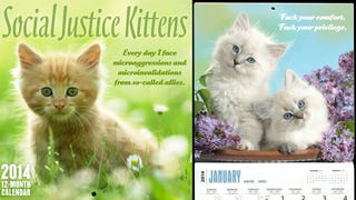 Here's the Absolute Best 2014 Cat Calendar