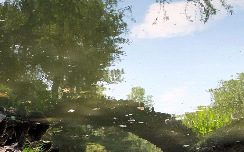Shooting Challenge: Reflection 1
