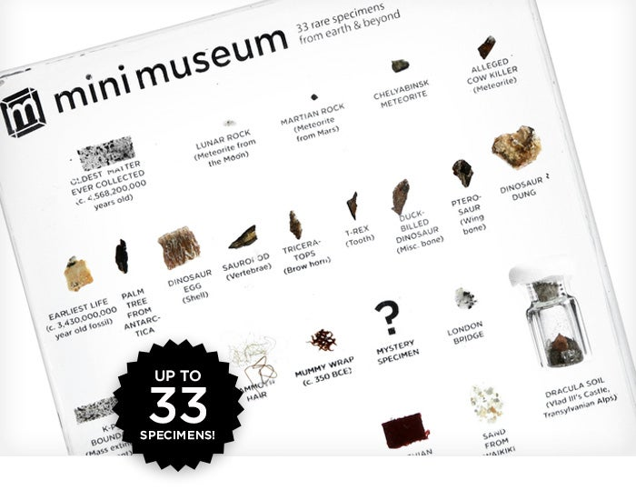 A Tiny Desktop Museum With Dinosaur Eggs, Moon Rocks, and Titanic Coal