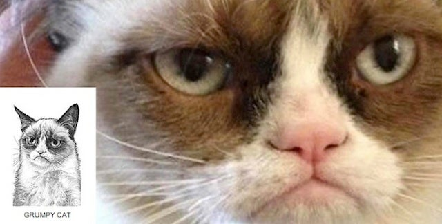 Grumpy Cat Latest Non-Human Entity To Get WSJ Stipple Portrait