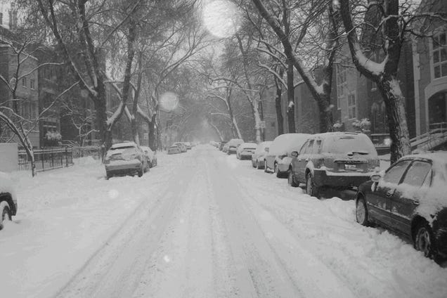 Shooting Challenge: Gray Winter