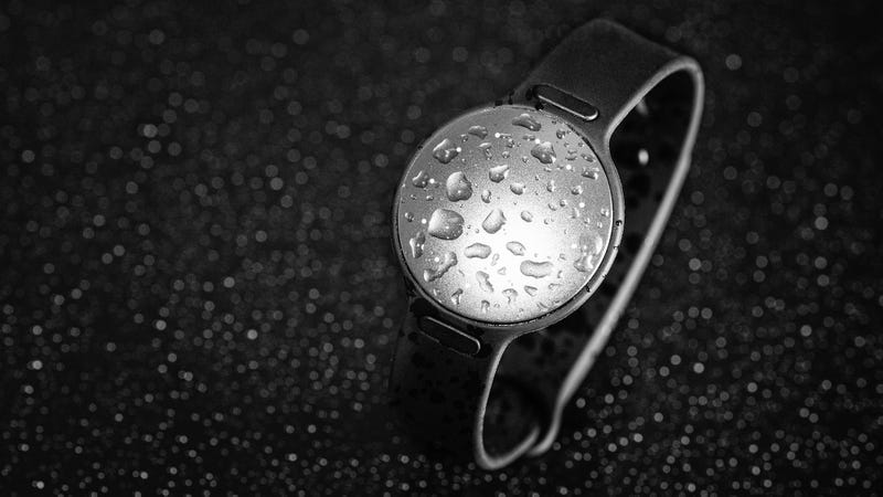 Misfit and Speedo's Swim-Tracker Gains Some Useful Smartwatch Functionality