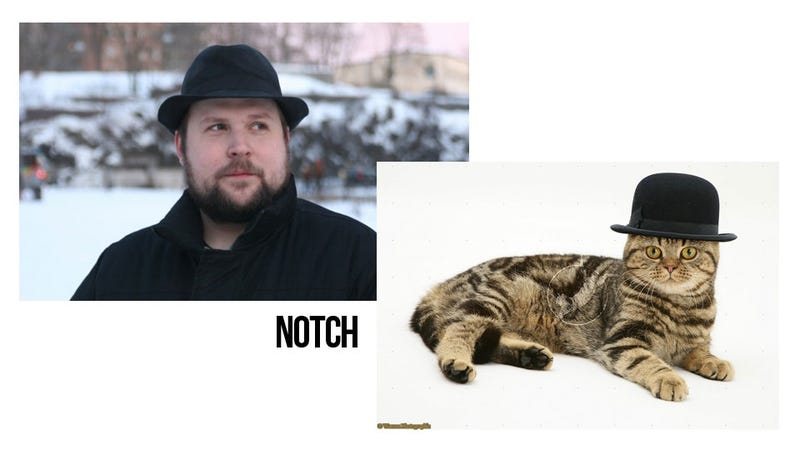 Game Developers Look Like Cats. It's Weird.