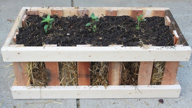 This Pallet Crate Box Garden Grows Veggies, Fits on Apartment Patios