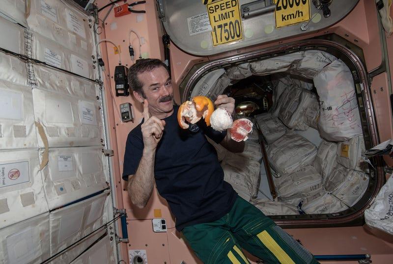 Beloved ISS Commander Chris Hadfield Is Retiring