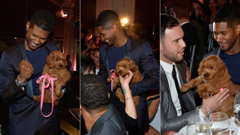 Usher's Dinner Date Is a Real Dog (an Adorable Dog!)