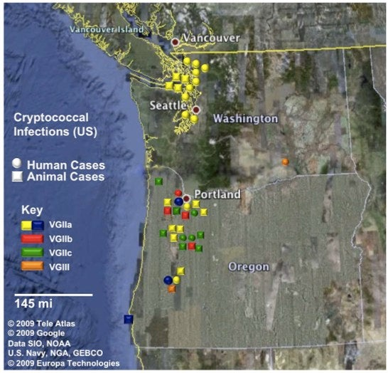 Toxic Airborne Fungus From Oregon Spreading Across West Coast