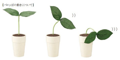 Japanese Pekoppa Plant Listens To Your Problems Because Nobody Else Wants To