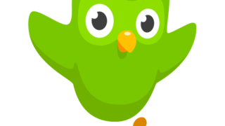Duolingo Leaderboard: Week 11