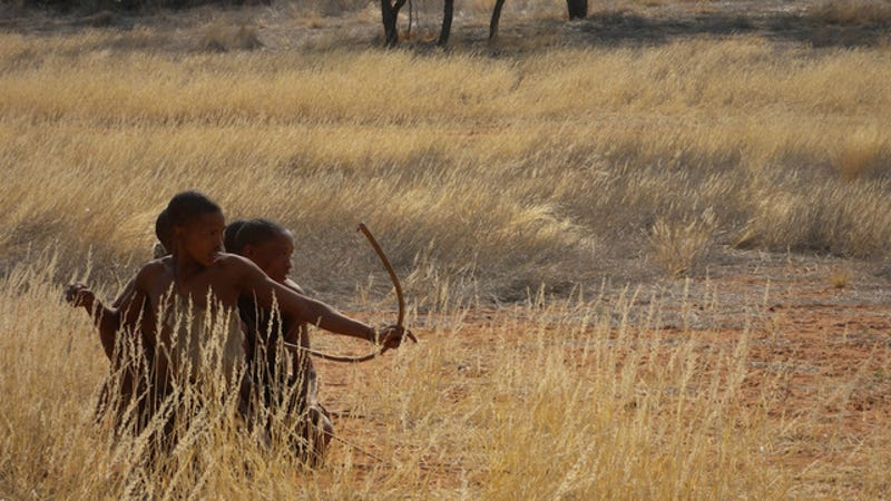We Can't Blame Obesity On Our Hunter-Gatherer Ancestors Anymore