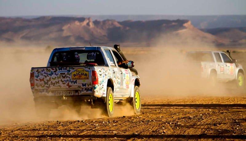 Gazelle Rally Recap