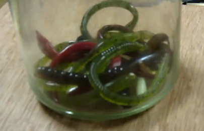 These Magnetic Fake Worms Creep Me Out More Than Real Worms