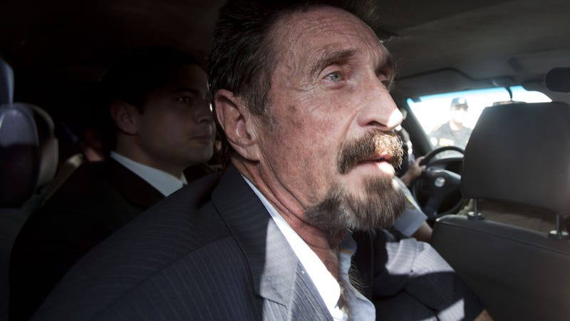 John McAfee Apparently Tried to Trick Reporters Into Thinking He Hacked WhatsApp