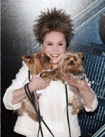 Cindy Adams: Crazy Dog Lady