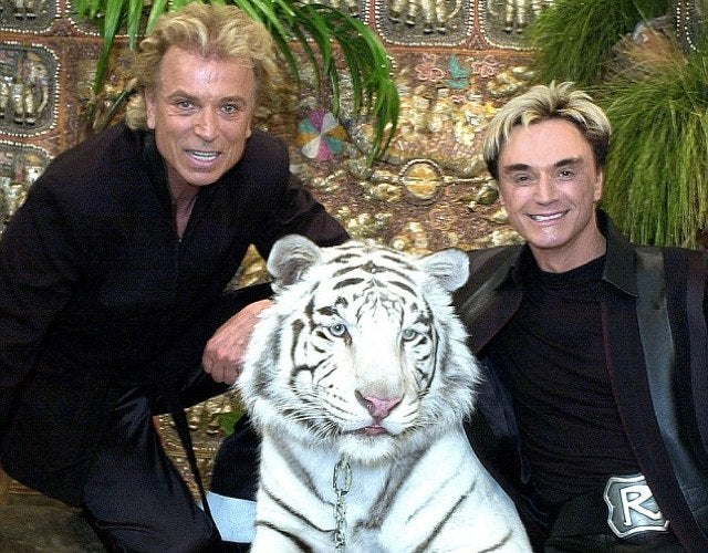 The White Tiger Who Attacked Roy (And Saved His Life) Is Dead