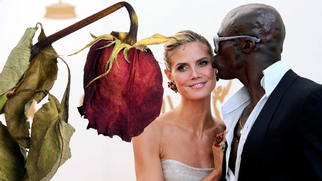 "I Guess the ""Rose"" Wilted: Heidi Klum and Seal to File for Divorce"