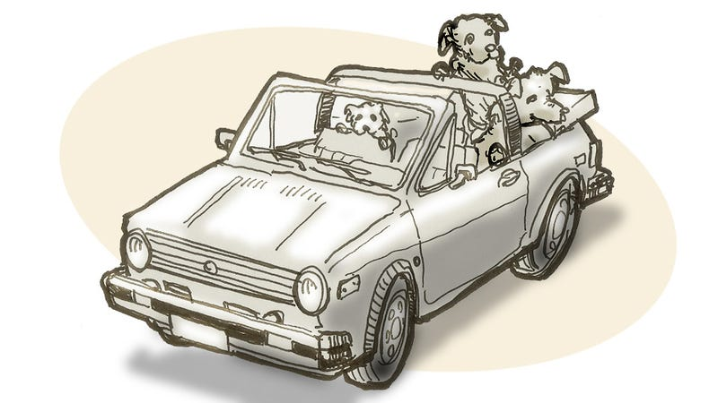In Memory Of Two Dogs And A Car