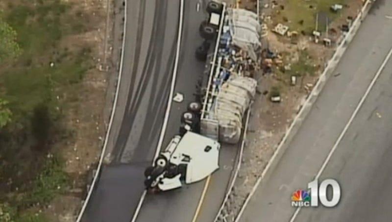 20 Million Bees Swarm Delaware Highway After Tractor-Trailer Crash